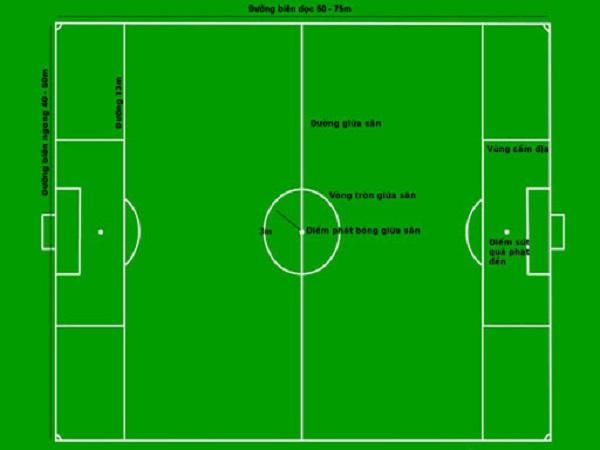 Bạn có biết sân bóng đá dài bao nhiêu mét không?