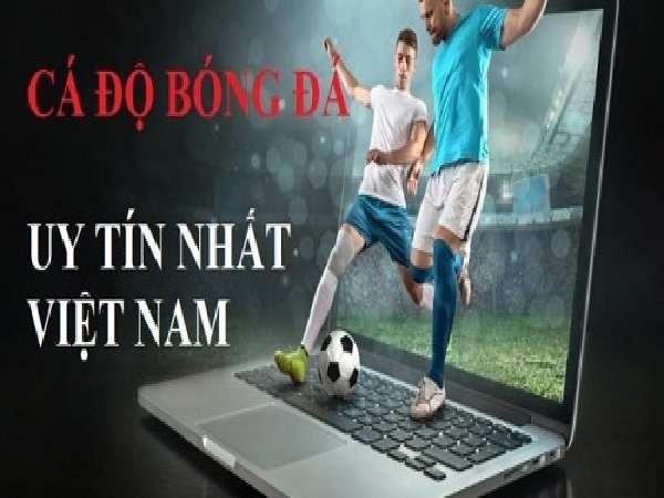 Tìm hiểu về trùm mạng cá độ bóng đá online